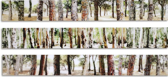 La Ina, 2009, verso signiert und nummeriert, Diasecverfahren, 25 x 200 cm, AP (5)
