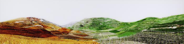 Vignobles, Schweiz, 2010, verso signiert und nummeriert, Diasecverfahren, 54 x 220 cm, AP (5)