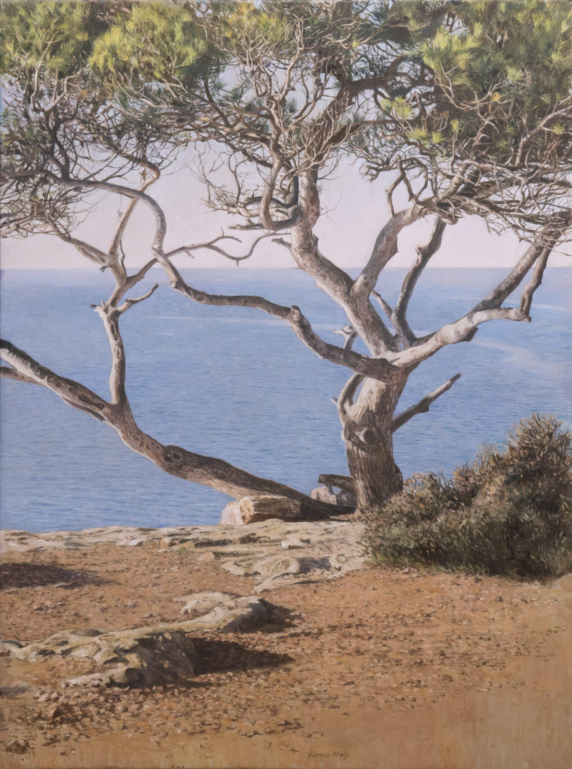 Matinada a Ischia, 2016, Öl auf Leinwand, 80 x 60 cm
